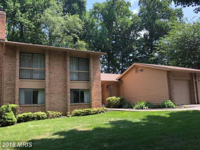 3 Arlive Court, Rockville, MD 20854 (#MC10289656) :: Bob Lucido Team of Keller Williams Integrity