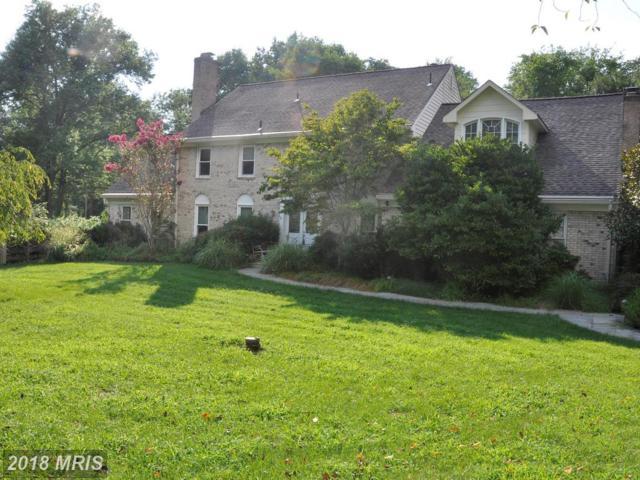 13405 Moran Drive, North Potomac, MD 20878 (#MC10308806) :: Dart Homes