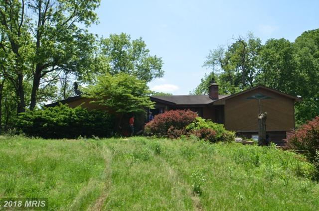 18810 River Road, Poolesville, MD 20837 (#MC10308826) :: Bob Lucido Team of Keller Williams Integrity