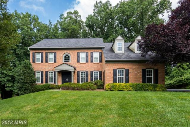 8810 Earl Court, Bethesda, MD 20817 (#MC10338212) :: Browning Homes Group
