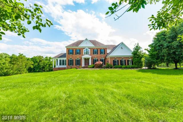 13705 Mt Prospect Drive, Rockville, MD 20850 (#MC10352169) :: The Speicher Group of Long & Foster Real Estate