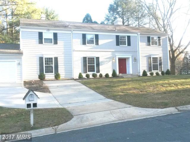 11925 Goya Drive, Potomac, MD 20854 (#MC9838643) :: LoCoMusings