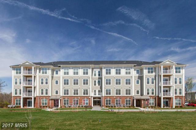 3911 Doc Berlin Drive #14, Silver Spring, MD 20906 (#MC9861578) :: Pearson Smith Realty