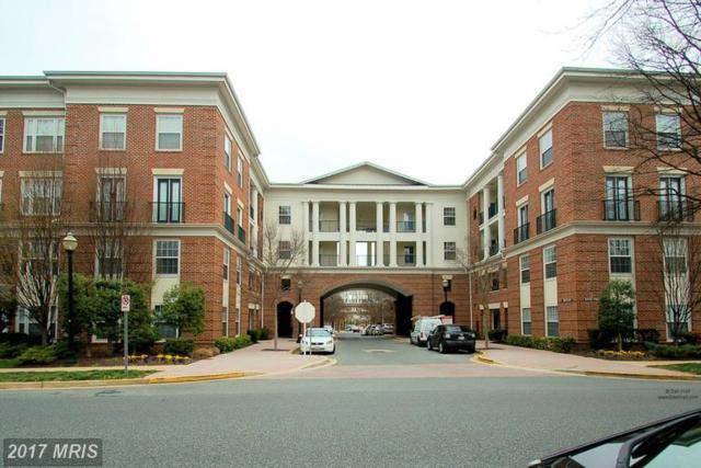 7 Granite Place #318, Gaithersburg, MD 20878 (#MC9903709) :: LoCoMusings