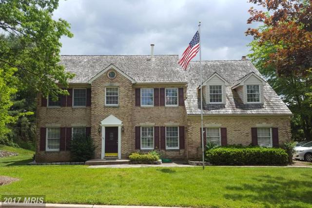 15561 Ambiance Drive, North Potomac, MD 20878 (#MC9919338) :: LoCoMusings