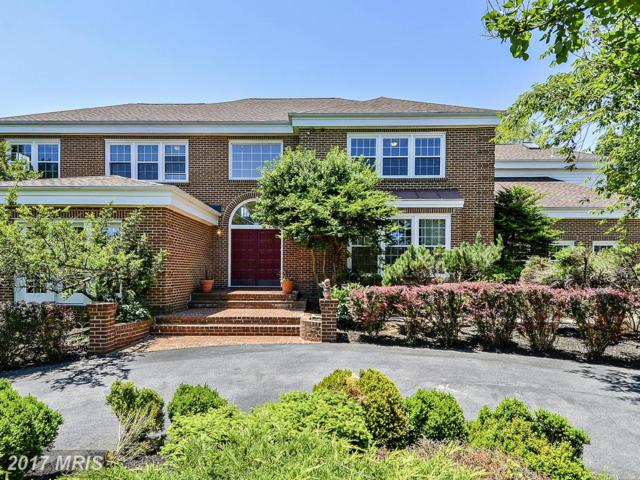 12808 Maidens Bower Drive, Potomac, MD 20854 (#MC9939019) :: LoCoMusings