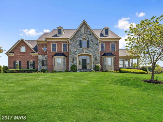 20317 Wiley Court, Laytonsville, MD 20882 (#MC9951674) :: LoCoMusings