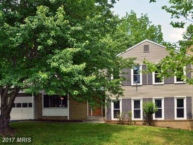 12013 Winesap Terrace, North Potomac, MD 20878 (#MC9954196) :: Pearson Smith Realty