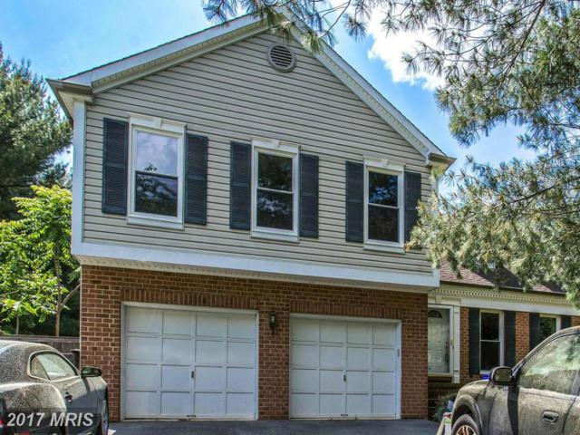 14616 Falling Leaf Way, Gaithersburg, MD 20878 (#MC9954733) :: The Sky Group