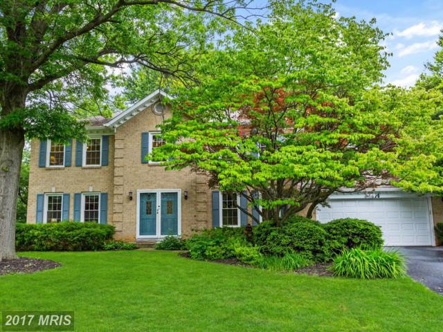 14 Wellwood Court, Silver Spring, MD 20905 (#MC9958863) :: LoCoMusings