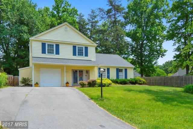 8503 Wild Olive Drive, Potomac, MD 20854 (#MC9968127) :: LoCoMusings