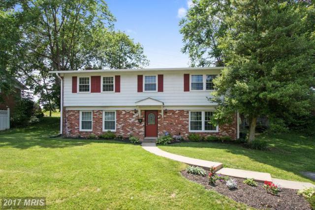 11628 Deborah Drive, Potomac, MD 20854 (#MC9970474) :: LoCoMusings