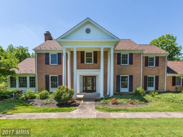 11004 Spring House Court, Potomac, MD 20854 (#MC9973558) :: Pearson Smith Realty