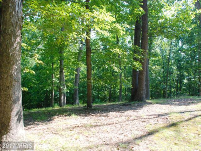 11013 Riverwood Drive, Potomac, MD 20854 (#MC9979792) :: LoCoMusings