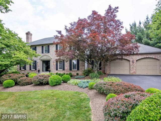 21611 Stableview Drive, Gaithersburg, MD 20882 (#MC9980683) :: LoCoMusings