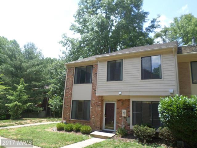 10846 Whiterim Drive, Potomac, MD 20854 (#MC9981207) :: Pearson Smith Realty