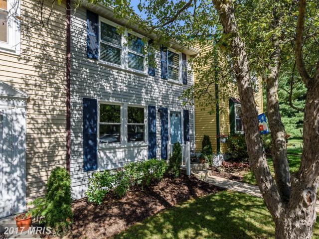 20322 Greenriver Terrace, Germantown, MD 20876 (#MC9981732) :: LoCoMusings