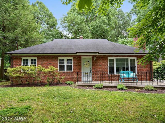 10313 Cherry Tree Lane, Silver Spring, MD 20901 (#MC9986493) :: LoCoMusings