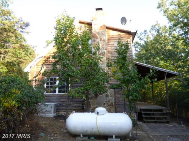 2011 Whitetail Ridge Road, Burlington, WV 26710 (#MI10056285) :: LoCoMusings