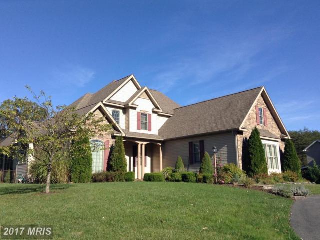 515 North Lakewood Drive, Ridgeley, WV 26753 (#MI10085161) :: Pearson Smith Realty