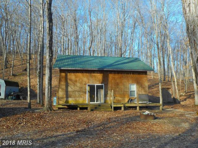 50 Sunrise Summit Dev., Fort Ashby, WV 26719 (#MI10266677) :: RE/MAX Gateway