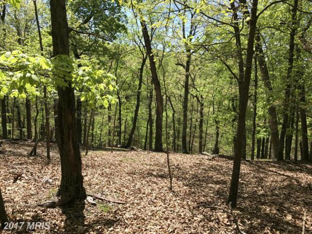 The Woods/S-Div Knobley Road, Keyser, WV 26726 (#MI9934335) :: LoCoMusings