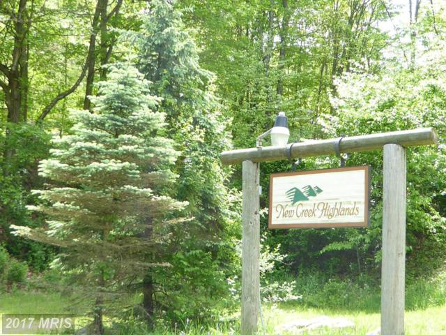 30 Autumn Leaf Drive, New Creek, WV 26743 (#MI9939463) :: Pearson Smith Realty