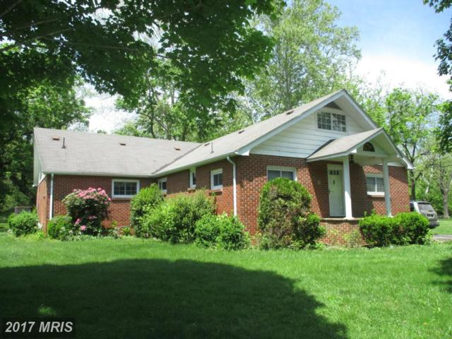 326 Cottage Grove Lane, Fort Ashby, WV 26719 (#MI9943071) :: Pearson Smith Realty