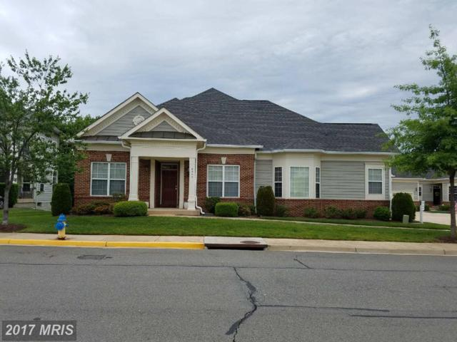 8347 Gaither Street #8347, Manassas, VA 20110 (#MN9959796) :: Pearson Smith Realty