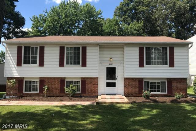 8193 Oakglen Road, Manassas, VA 20110 (#MN9981283) :: LoCoMusings