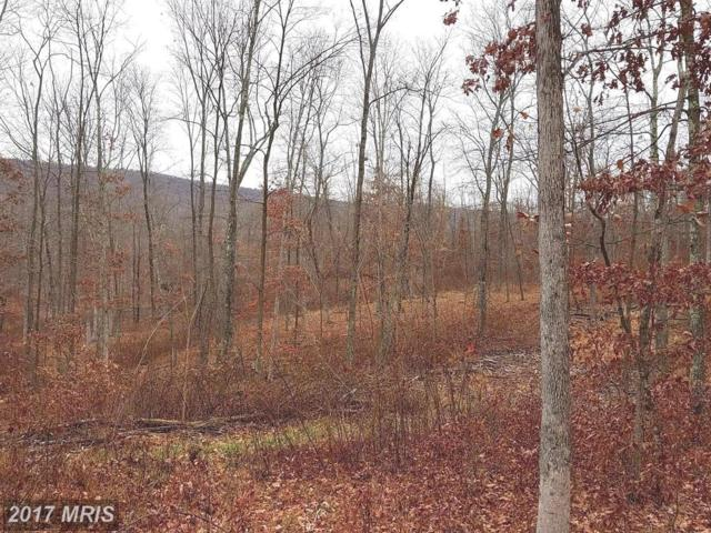 7 Whistling Winds Trail, Berkeley Springs, WV 25411 (#MO10119714) :: Pearson Smith Realty
