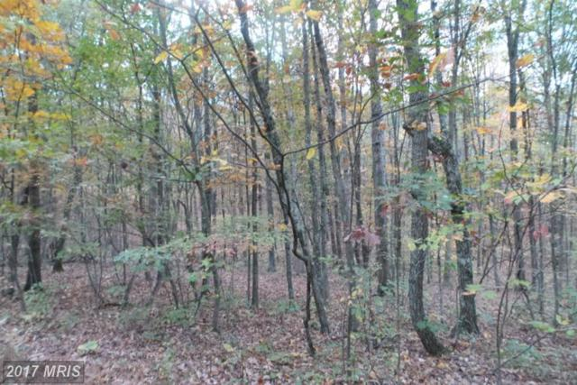 10 Off Sticky Kline, Berkeley Springs, WV 25411 (#MO9502304) :: Pearson Smith Realty
