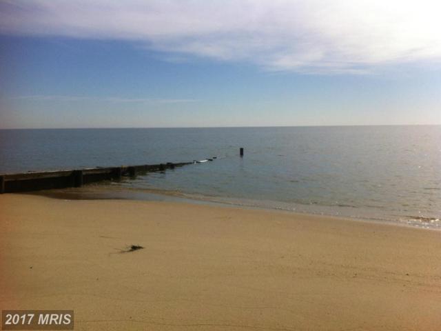 923 Chesapeake Beach Road, Reedville, VA 22539 (#NV9899099) :: Green Tree Realty