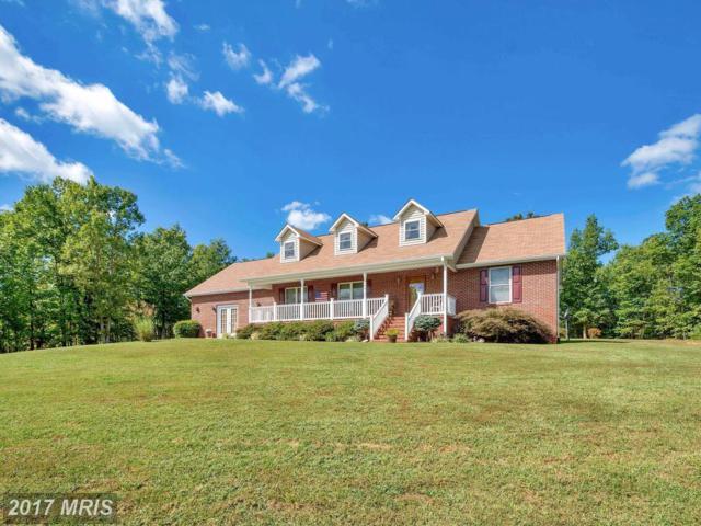 3936 Rapidan Hills Drive, Locust Grove, VA 22508 (#OR10065399) :: Pearson Smith Realty