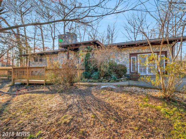 3914 Lakeview Parkway, Locust Grove, VA 22508 (#OR10149095) :: Green Tree Realty