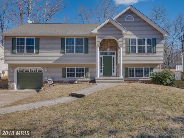 4018 Lakeview Parkway, Locust Grove, VA 22508 (#OR10150689) :: Green Tree Realty