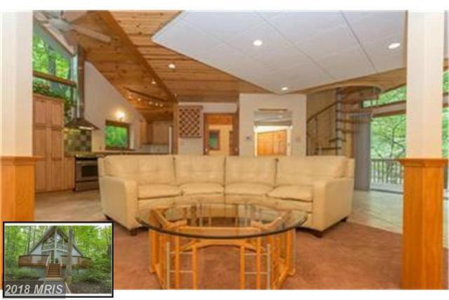 105 Skyline Road, Locust Grove, VA 22508 (#OR10218376) :: Browning Homes Group