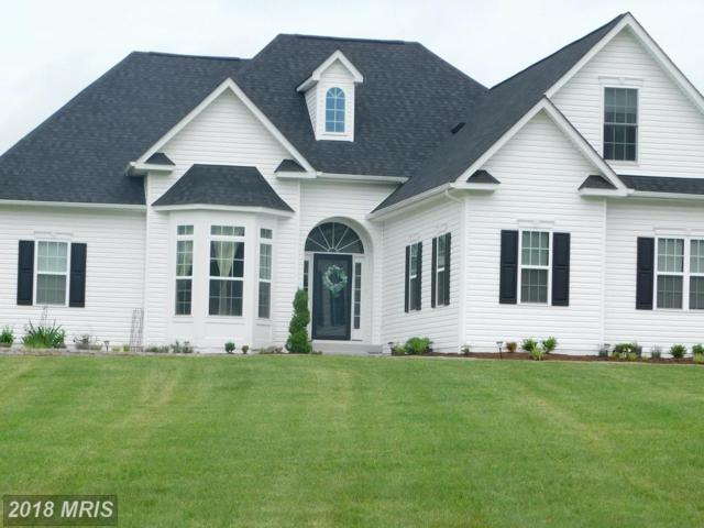 9354 Lovetts Lane, Unionville, VA 22567 (#OR10250932) :: Bob Lucido Team of Keller Williams Integrity