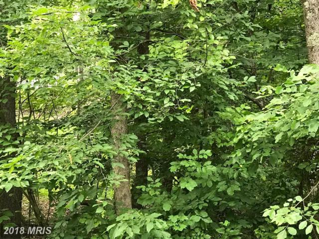 103 Gold Rush Drive, Locust Grove, VA 22508 (#OR10289509) :: The Licata Group/Keller Williams Realty