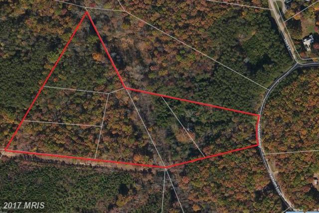 32850 Jackson Loop, Locust Grove, VA 22508 (#OR9811916) :: Pearson Smith Realty