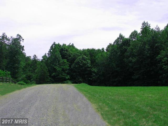 14490 Twin Brook Drive, Barboursville, VA 22923 (#OR9871394) :: Pearson Smith Realty