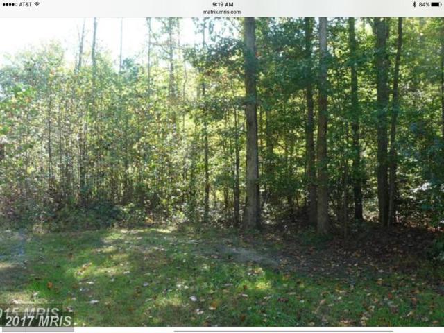 Homestead Drive, Rhoadesville, VA 22542 (#OR9906312) :: LoCoMusings