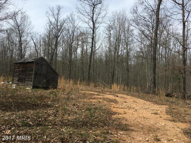 Stonesiffer Lane, Unionville, VA 22567 (#OR9912499) :: Pearson Smith Realty