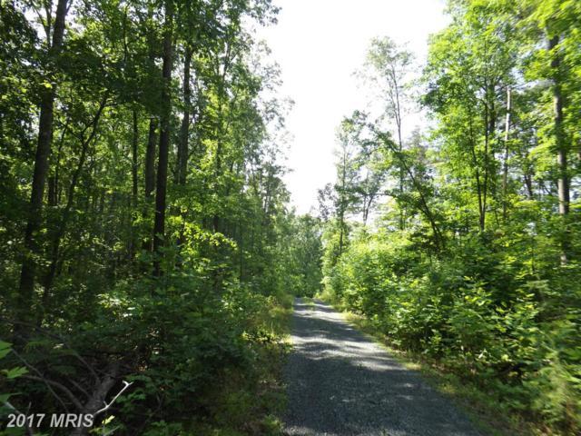 Colonial Lane, Locust Grove, VA 22508 (#OR9930138) :: LoCoMusings