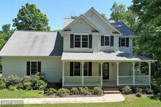 18125 Hope Lane, Orange, VA 22960 (#OR9953809) :: Pearson Smith Realty