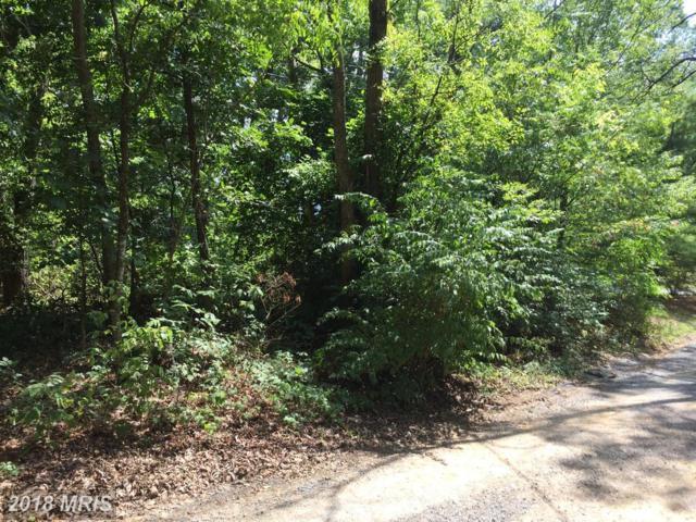 300 Riverview Drive, Luray, VA 22835 (#PA10012746) :: Pearson Smith Realty