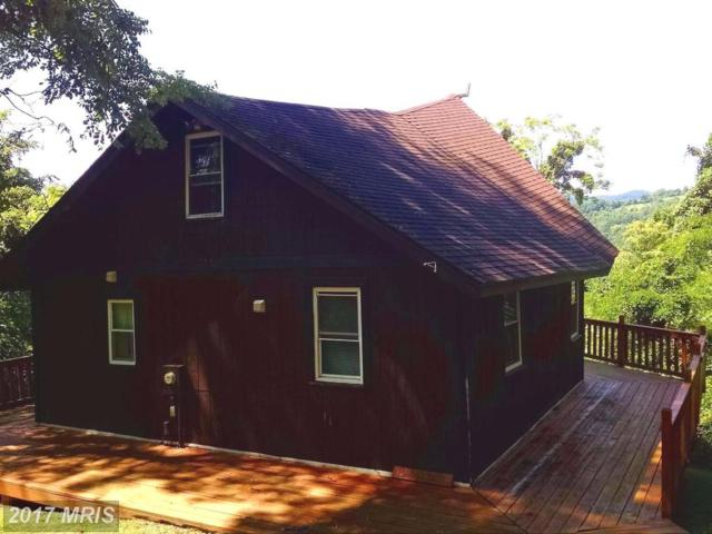 1040 Overlook Mountain Road, Elkton, VA 22827 (#PA10022262) :: Pearson Smith Realty