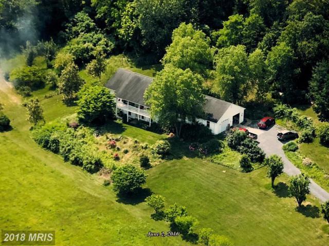 531 Parkview Estates Road, Luray, VA 22835 (#PA10287685) :: Keller Williams Pat Hiban Real Estate Group