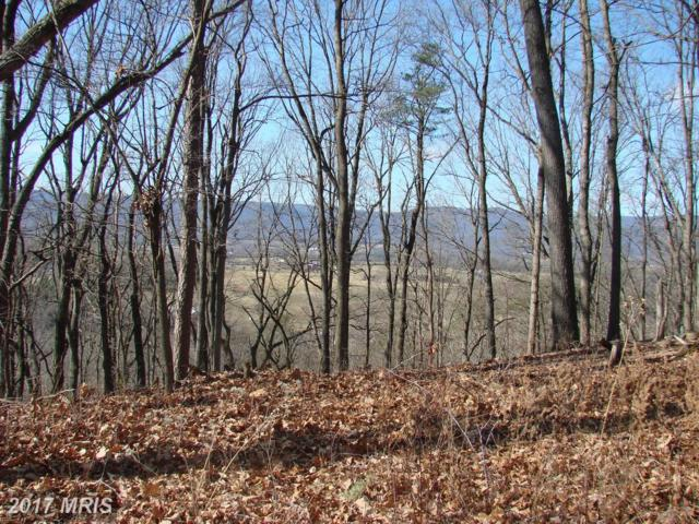 River View Place, Shenandoah, VA 22849 (#PA9852064) :: Pearson Smith Realty