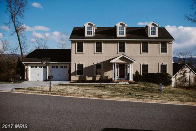 433 Forest Hills Drive, Luray, VA 22835 (#PA9876519) :: LoCoMusings